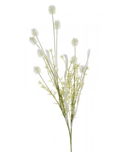 Trawa Kwitnąca Biała